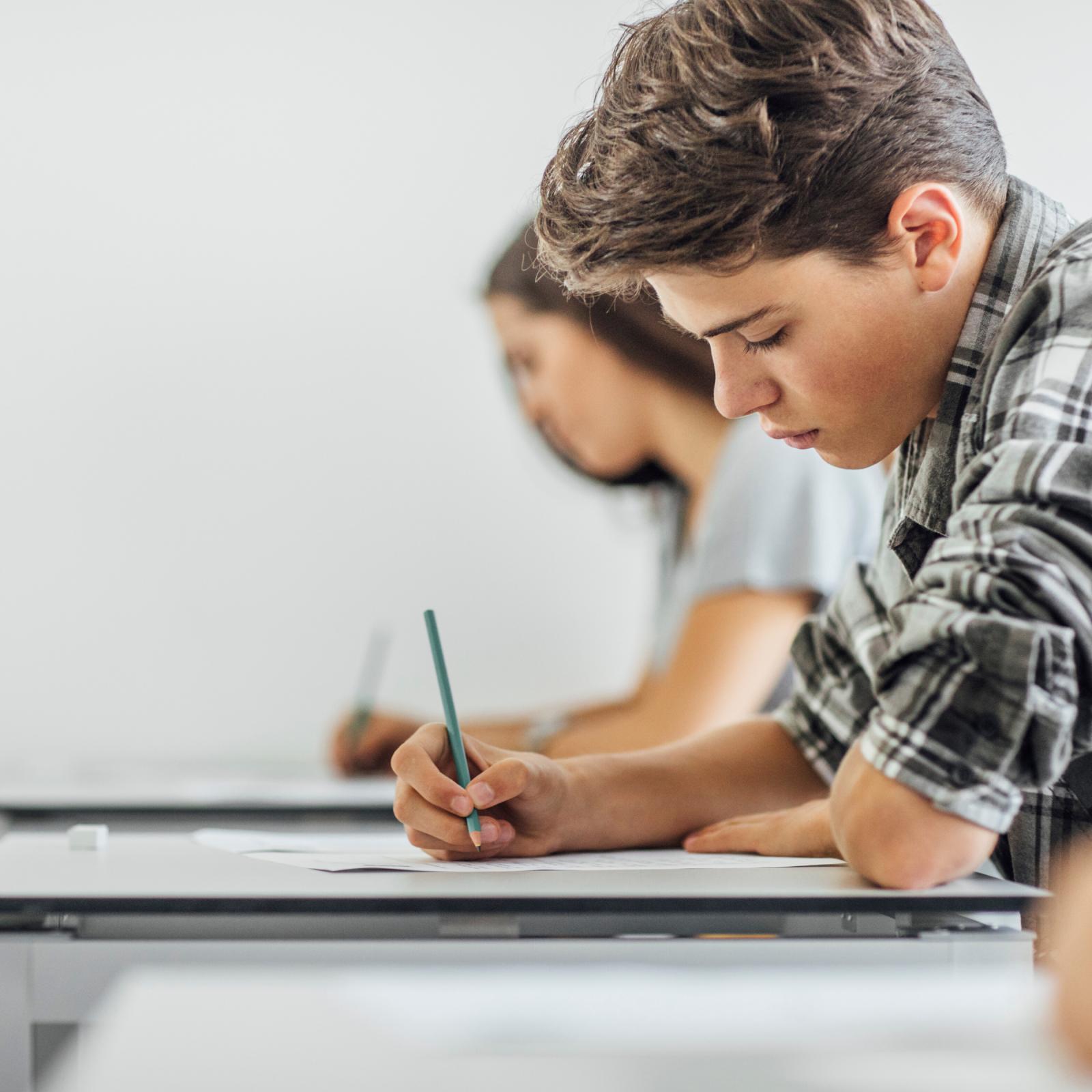 Preparación para exámenes de francés (14-17 años) - A NIVEL- ABITUR - MATURA