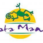logo kata mambo